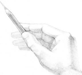Как научится красиво рисовать карандашом дома