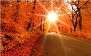 оранжевый цвет в психологии, описание