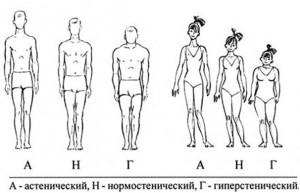 Астеническое телосложение