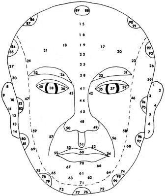 Схема зон на лице
